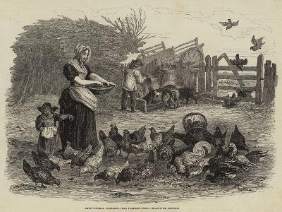 The Poultry-Yard--Giclee Print