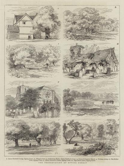 The Preservation of Epping Forest-Joseph Nash-Giclee Print