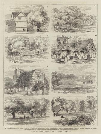 https://imgc.artprintimages.com/img/print/the-preservation-of-epping-forest_u-l-pupuhh0.jpg?p=0