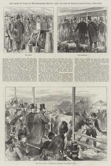 The Prince of Wales at the Dorchester Meeting, Bath and West of England Agricultural Association--Giclee Print