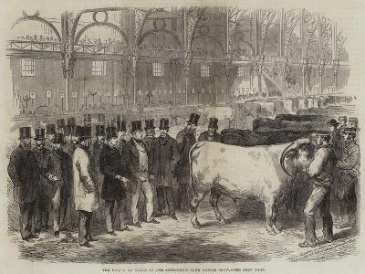 The Prince of Wales at the Smithfield Club Cattle Show--Giclee Print