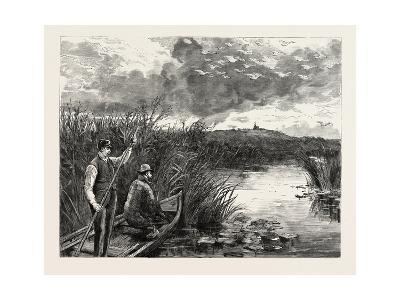 The Prince of Wales Shooting Wild Swans at Ekolsund, Sweden--Giclee Print