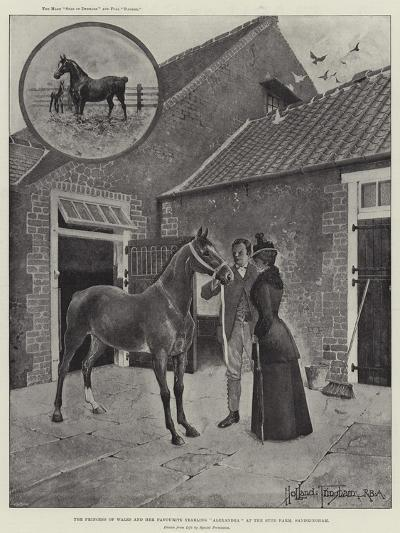 The Princess of Wales and Her Favourite Yearling Alexandra at the Stud Farm, Sandringham-Joseph Holland Tringham-Giclee Print