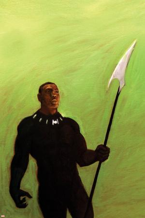https://imgc.artprintimages.com/img/print/the-punisher-no-4-cover-art-featuring-black-panther-tchalla_u-l-q134o610.jpg?p=0