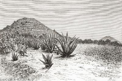 The Pyramid of the Sun, Teotihuacan, Mexico--Giclee Print