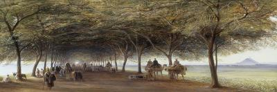 The Pyramids Road, Gizeh, 1873-Edward Lear-Giclee Print
