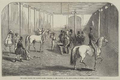 The Queen Viewing the Arabian Horses Presented to Her Majesty, in the Riding-House, at Pimlico--Giclee Print