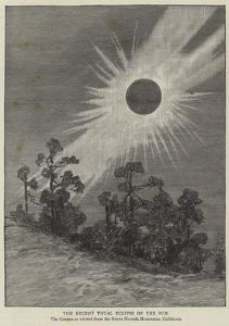 The Recent Total Eclipse of the Sun