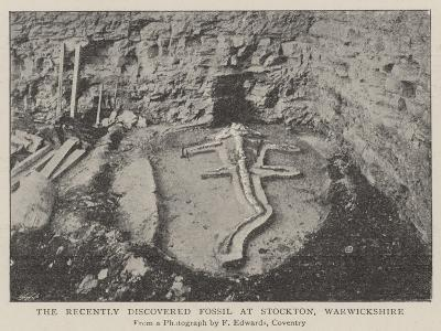 The Recently Discovered Fossil at Stockton, Warwickshire--Giclee Print