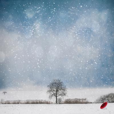 The Red Umbrella-Philippe Sainte-Laudy-Photographic Print