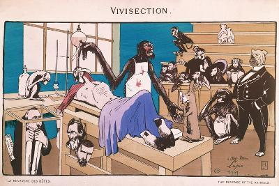 The Revenge of the Animals, Caricature of Vivisection, 1909--Giclee Print