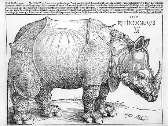 The Rhinoceros, 1515-Albrecht D?rer-Premium Giclee Print
