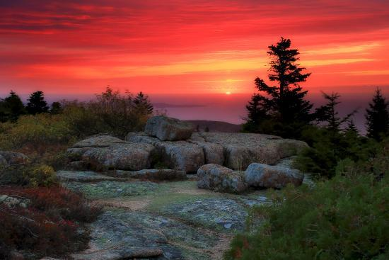 The Rising Sun over Atlantic Ocean and Boulders and Flora Atop Cadillac Mountain-Robbie George-Photographic Print