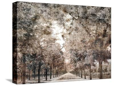 The Road To Napa-Golie Miamee-Stretched Canvas Print