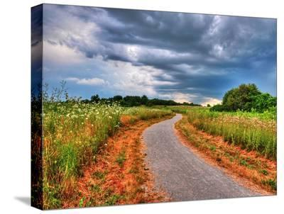 The Road to Nowhere-Tatiana Lopatina-Stretched Canvas Print