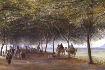 The Road to the Pyramids at Giza, C1873-Edward Lear-Giclee Print