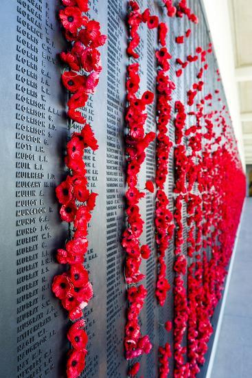The Roll of Honour and the Names of Fallen Soldiers are Remembered with Bright Red Poppies-Jason Edwards-Photographic Print