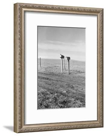 The Rolling Lands-Dorothea Lange-Framed Art Print
