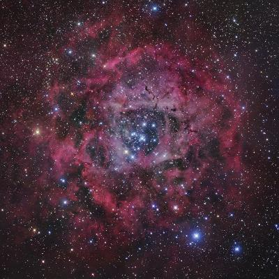 The Rosette Nebula in Monoceros-Robert Gendler-Photographic Print