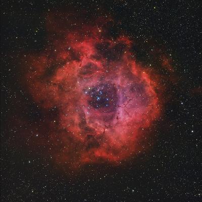 The Rosette Nebula-Stocktrek Images-Photographic Print