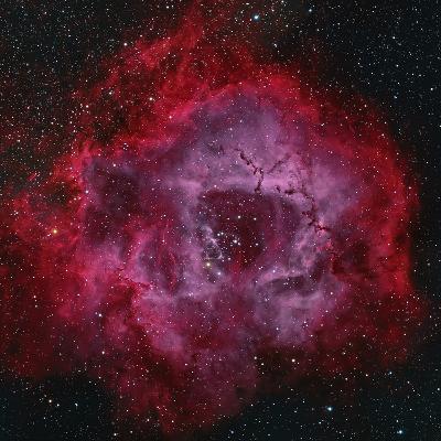 The Rosette Nebula--Photographic Print