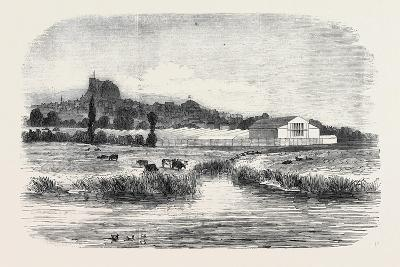The Royal Agricultural Society of England, Meeting at Lewes: the Cattle Show, from the River, 1852--Giclee Print