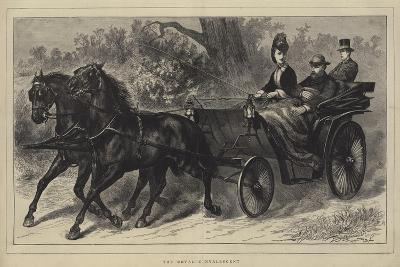 The Royal Convalescent--Giclee Print