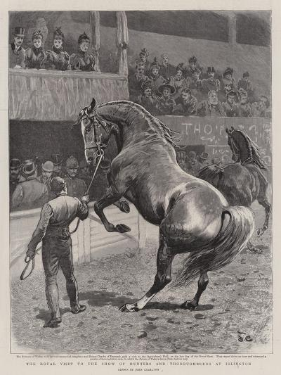 The Royal Visit to the Show of Hunters and Thoroughbreds at Islington-John Charlton-Giclee Print