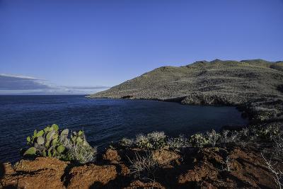 The Rugged Coast of Rabida Island-Jad Davenport-Photographic Print