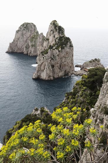 The Rugged Faraglioni Rocks in Capri, Campania, Italy, Mediterranean, Europe-Martin Child-Photographic Print