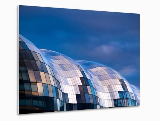 The Sage-Craig Roberts-Metal Print