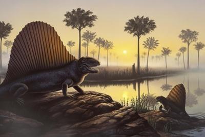 The Sailed-Back Dimetrodon Sunbathes in a Primordial Swamp
