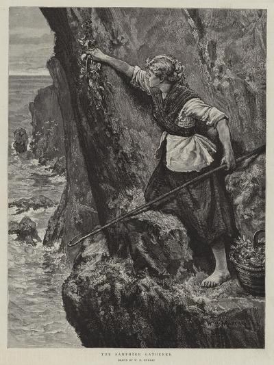 The Samphire Gatherer-William Bazett Murray-Giclee Print