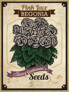 Seed Packet - Begonia by The Saturday Evening Post