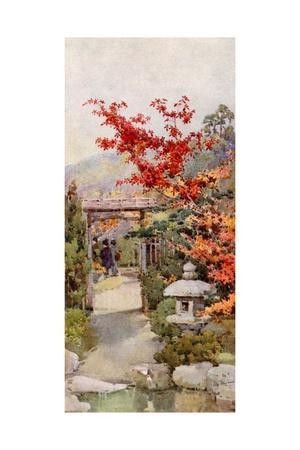 https://imgc.artprintimages.com/img/print/the-scarlet-maple_u-l-pp76ch0.jpg?p=0