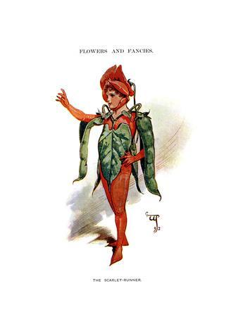 https://imgc.artprintimages.com/img/print/the-scarlet-runner-1899_u-l-ptpr8c0.jpg?p=0