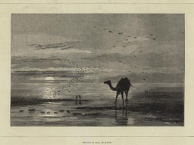 The Sea of Aral at Sunset--Giclee Print