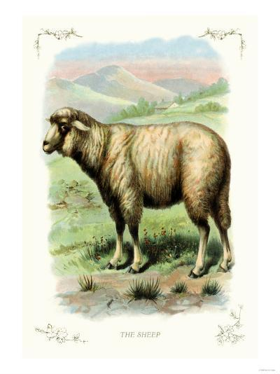 The Sheep--Art Print