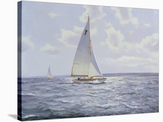 The Shimmering Sea, 2005--Stretched Canvas Print