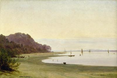 The Shore of the Elbe-Marcus Johann Haeselich-Giclee Print
