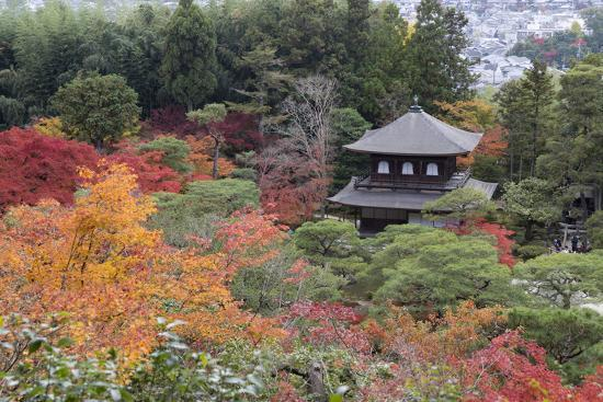 The Silver Pavilion and Gardens in Autumn-Stuart Black-Photographic Print