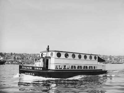 The Silver Swan on Lake Union-Ray Krantz-Photographic Print