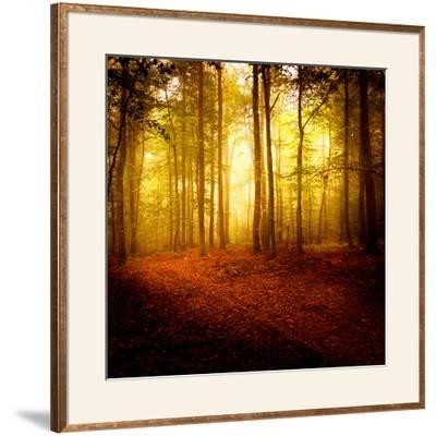 The Smell of Autumn-Philippe Sainte-Laudy-Framed Photographic Print