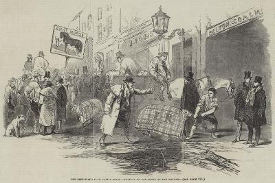 The Smithfield Club Cattle Show, Arrival of Fat Sheep at the Bazaar--Giclee Print