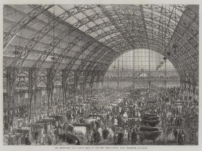 The Smithfield Club Cattle Show at the New Agricultural Hall, Islington--Giclee Print