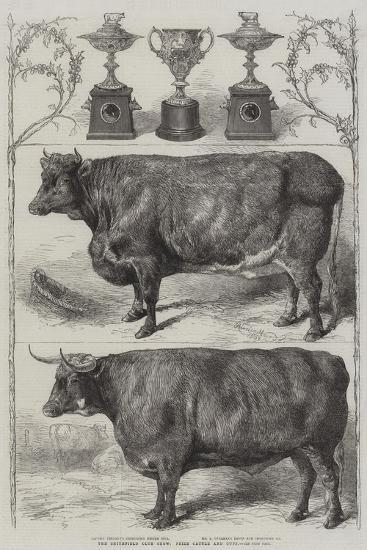 The Smithfield Club Cattle Show, Prize Cattle and Cups-Harrison William Weir-Giclee Print