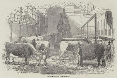 The Smithfield Club Cattle Show-Yard--Giclee Print