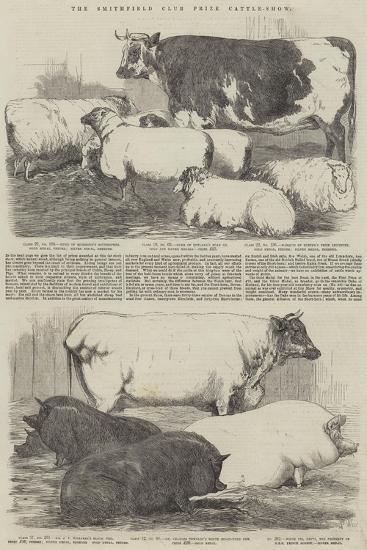 The Smithfield Club Prize Cattle-Show-Harrison William Weir-Giclee Print