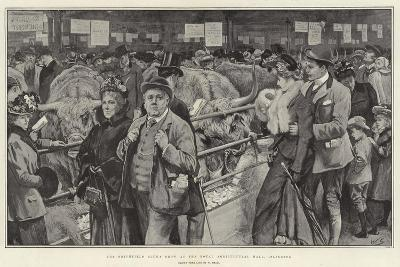 The Smithfield Club's Show at the Royal Agricultural Hall, Islington-William Small-Giclee Print