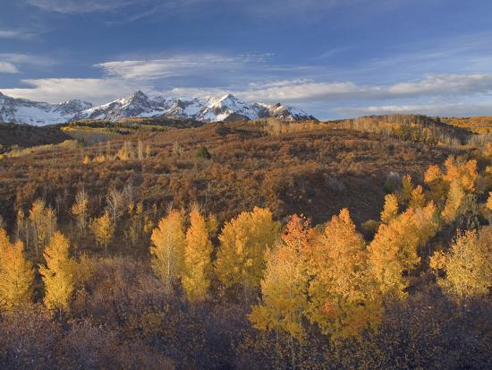 The Sneffels Range in the San Juan Mountains as Seen from the Dallas Divide in the Fall, Colorado-Sean Bagshaw-Photographic Print